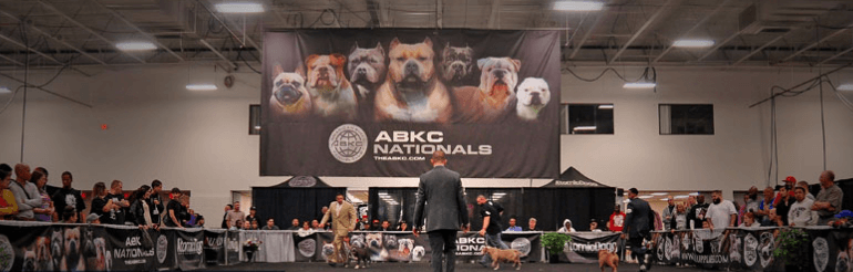 ABKC Breeds